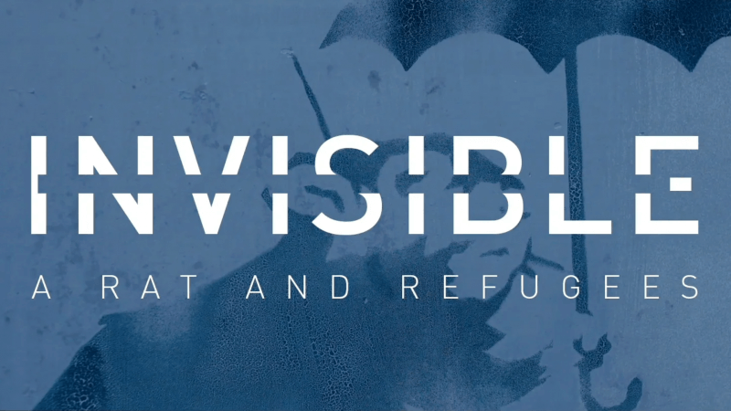 INVISIBLE: A RAT AND REFUGEES